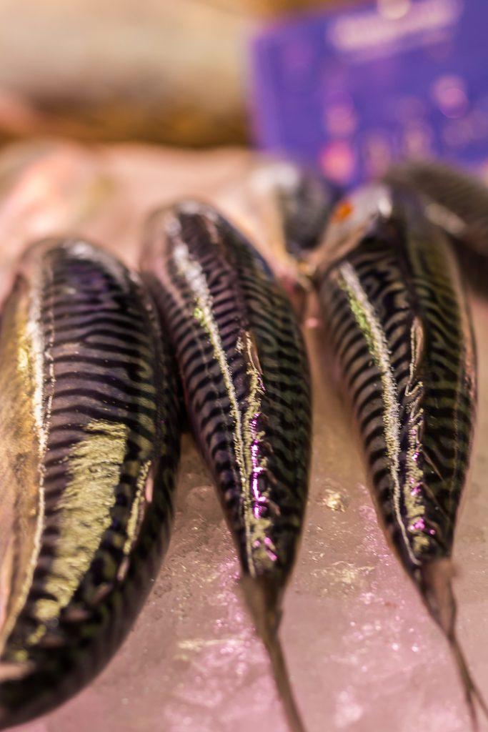 Étal de poissons aux Halles de sète