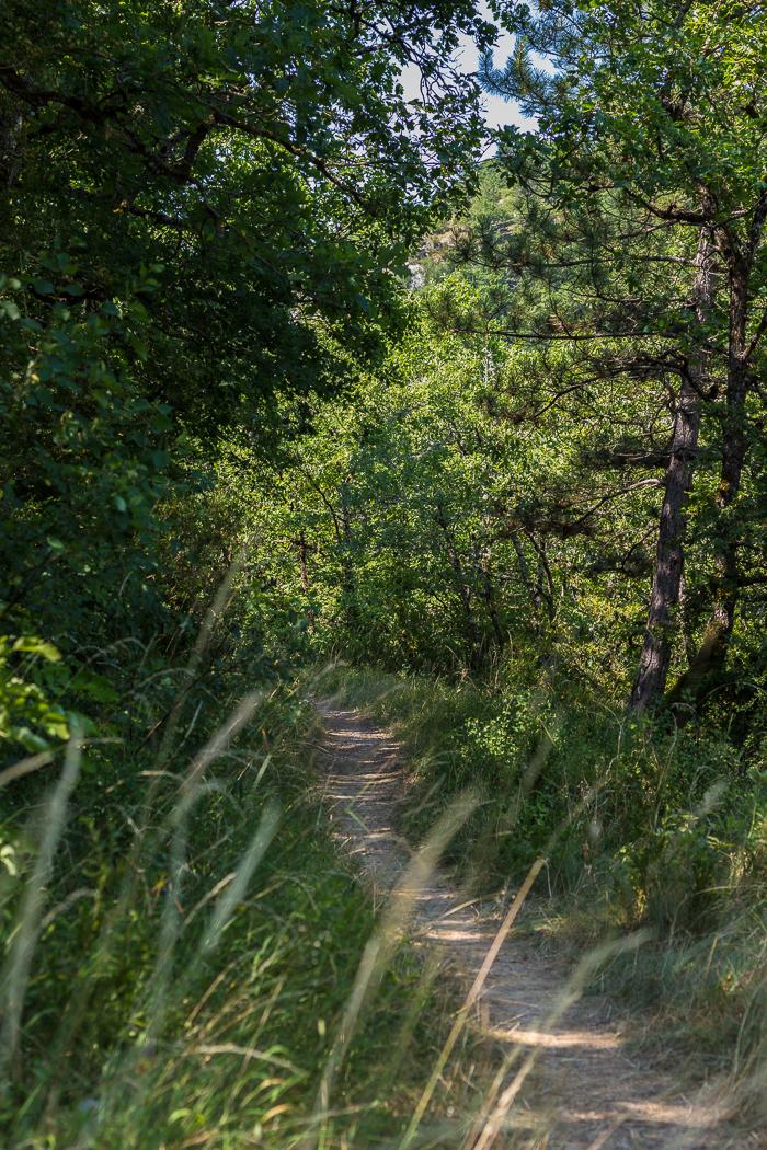 sentier des Gorges du Tarn en Lozère