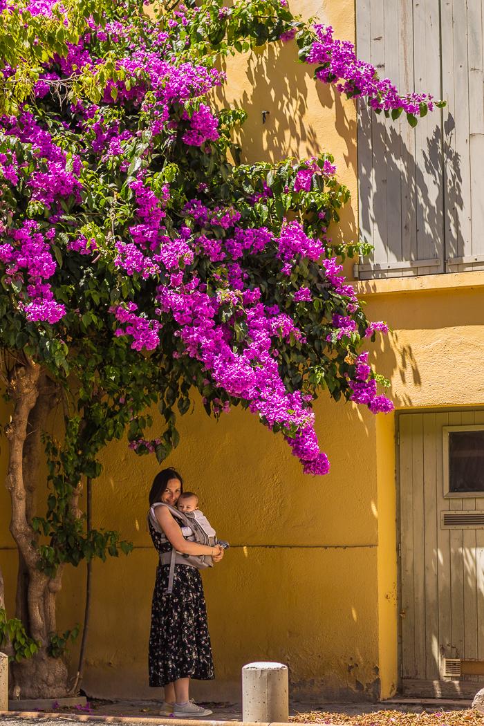 Rue fleurie à Ille sur Têt