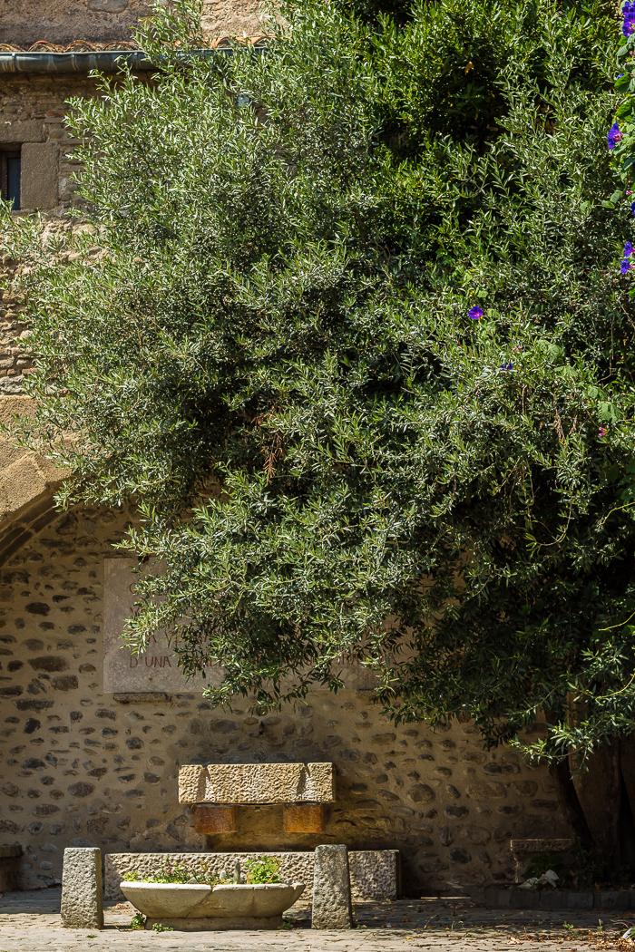 Fontaine sur la place del Ram à Ille sur Têt