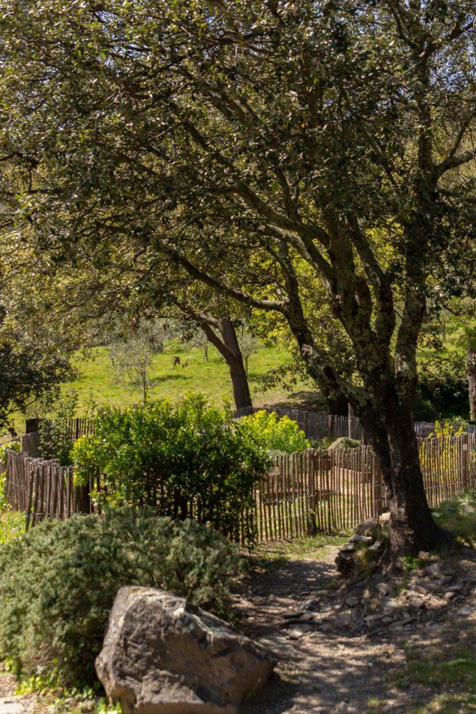 Jardin potager du Prieuré de Serrabone