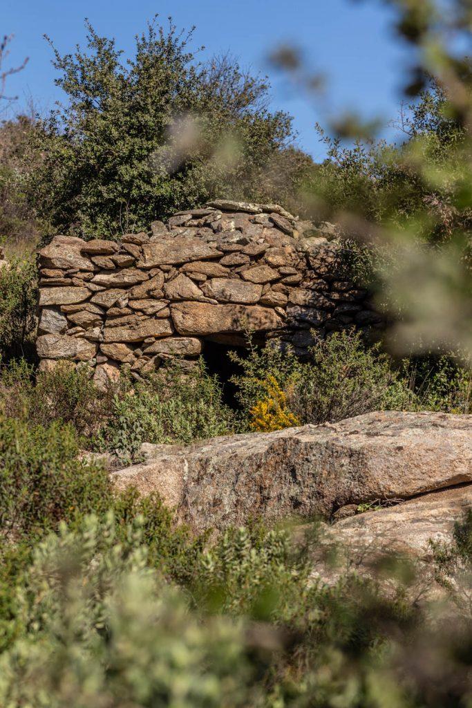 Orri sur les sentiers de balades à Rodès