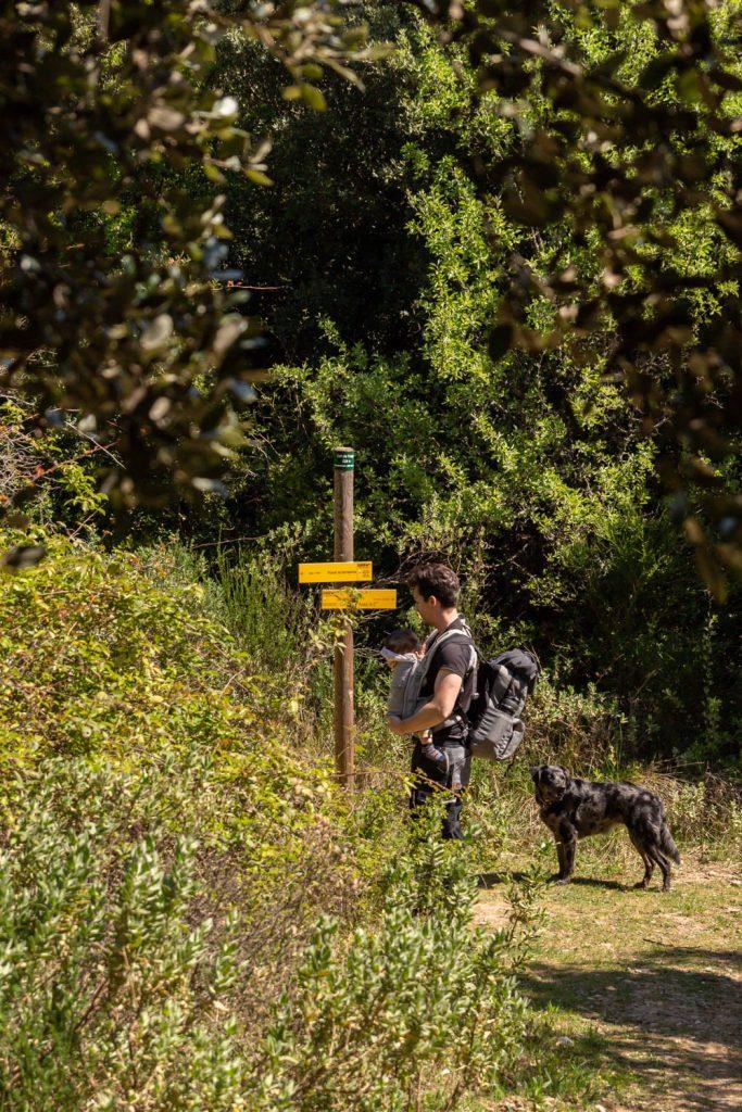 randonnée du prieuré de Serrabone au Col des Arques